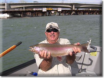 Fish caught During Guided Fishing Trip on the  Sacramento River in Redding Ca
